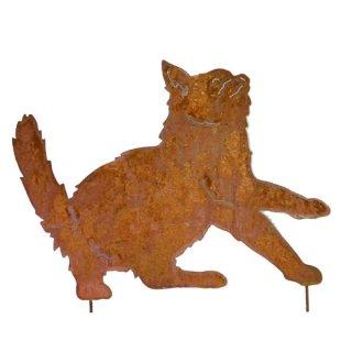 Katze Edelrost