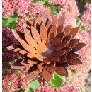 Edelrost Blume klein