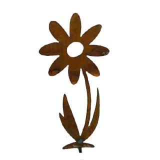 Blume klein Edelrost