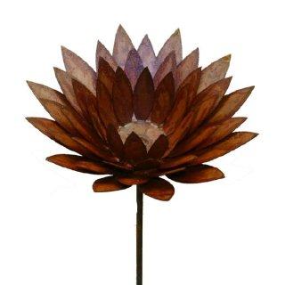Blume Edelrost