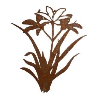 Blume Lilie Edelrost