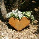 Herz zum Pflanzen Edelrost