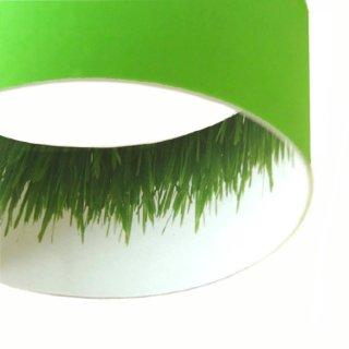 Außen grün / innen Dekor